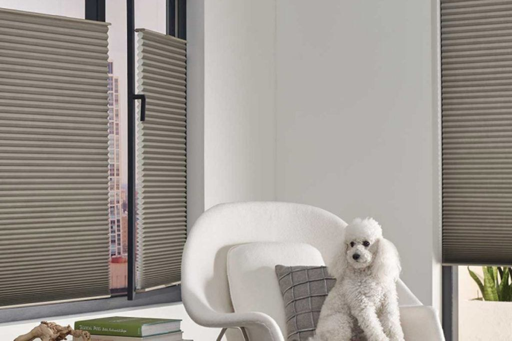 Honeycomb blinds in room with white dog on chair